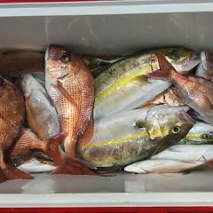 9月25日(水)午後便・ウタセマダイ釣りの写真その9
