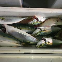 9月25日(水)午後便・ウタセマダイ釣りの写真その12
