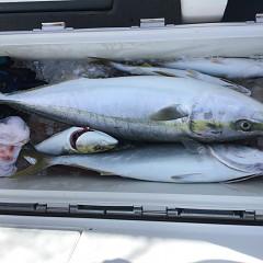9月 29日(日) 午前便・タテ釣りの写真その8
