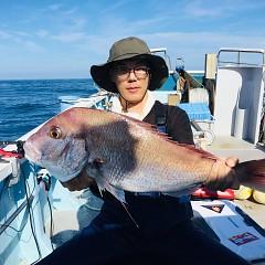 9月 29日(日) 午後便・ウタセ真鯛の写真その1