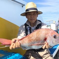 9月 29日(日) 午後便・ウタセ真鯛の写真その2