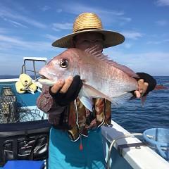 9月 29日(日) 午後便・ウタセ真鯛の写真その3