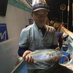 9月 29日(日) 午後便・ウタセ真鯛の写真その6