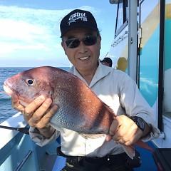 9月 30日(月) 午後便・ウタセ真鯛の写真その2