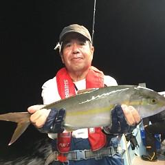 9月 30日(月) 午後便・ウタセ真鯛の写真その3