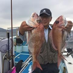10月 8日(火) 午後便・ウタセ真鯛の写真その6