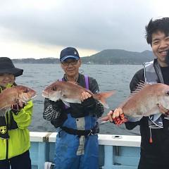 10月 8日(火) 午後便・ウタセ真鯛の写真その7
