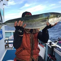 10月 20日(日) 午後便・ウタセ真鯛の写真その4