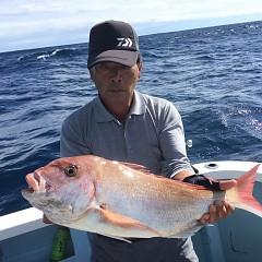 10月 22日(火) 午後便・ウタセ真鯛の写真その3