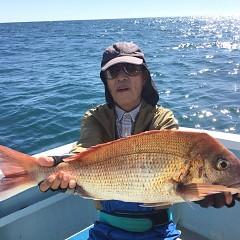 10月 23日(水) 午前便・ウタセ真鯛の写真その1