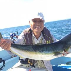 10月 23日(水) 午前便・ウタセ真鯛の写真その2