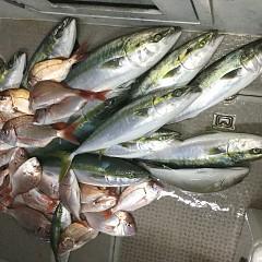 10月23日(水)午後便・ウタセマダイ釣りの写真その6