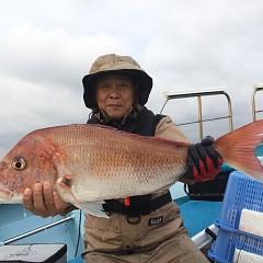 10月 29日(火) 午後便・ウタセ真鯛の写真その1