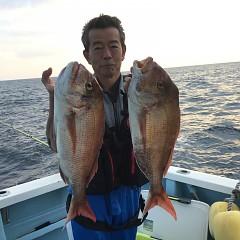 10月 30日(水)午前・ 午後便・ウタセ真鯛の写真その1