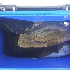 11月20日(水)午前便・ヒラメ釣りの写真その6