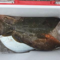 11月 25日(月) 午前便・ヒラメ釣りの写真その2