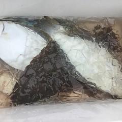 11月 27日(水) 午前便・ヒラメ釣りの写真その2
