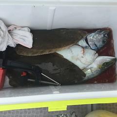11月 27日(水) 午前便・ヒラメ釣りの写真その4