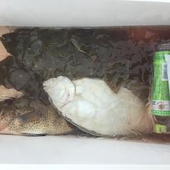 11月 27日(水) 午前便・ヒラメ釣りの写真その5