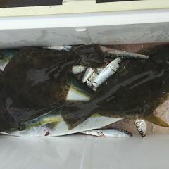 11月 27日(水) 午前便・ヒラメ釣りの写真その6