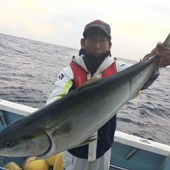 11月 27日(水) 午後便・ウタセ真鯛の写真その1