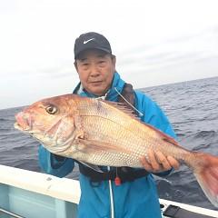 11月 27日(水) 午後便・ウタセ真鯛の写真その2