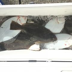 11月 29日(金) 午前便・ヒラメ釣りの写真その6