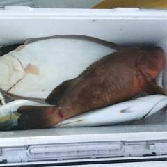 12月 13日(金) 午後便・ヒラメ釣りの写真その8