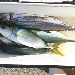 12月 15日(日) 午前便・ヒラメ釣りの写真その4