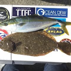 12月 15日(日) 午前便・ヒラメ釣りの写真その6