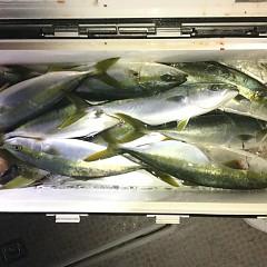 12月 15日(日) 午後便・ウタセ真鯛の写真その11
