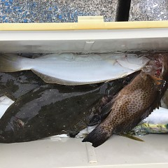 12月17日(火)午前便・ヒラメ釣りの写真その1