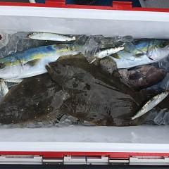 12月17日(火)午前便・ヒラメ釣りの写真その3