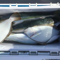 12月 23日(月)午前便・ヒラメ釣りの写真その2