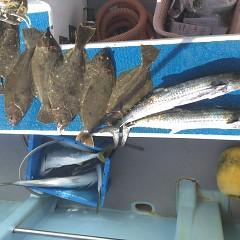 12月 23日(月)午前便・ヒラメ釣りの写真その3