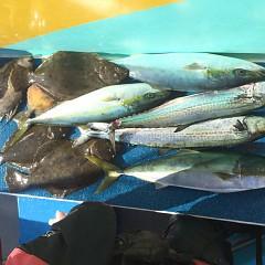12月 23日(月)午前便・ヒラメ釣りの写真その4