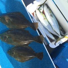 12月 23日(月)午前便・ヒラメ釣りの写真その6