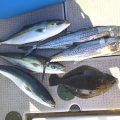 12月 23日(月)午前便・ヒラメ釣りの写真その7