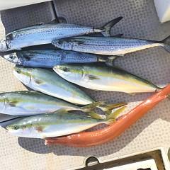 12月 23日(月)午前便・ヒラメ釣りの写真その8