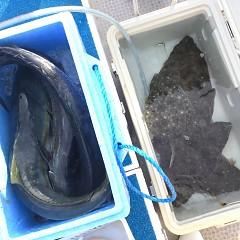 12月 24日(火) 9時出船・ヒラメ釣りの写真その5