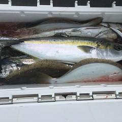 12月 26日(木) 午前便・ヒラメ釣りの写真その8