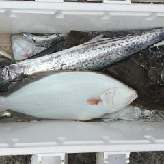 12月 26日(木) 午前便・ヒラメ釣りの写真その12