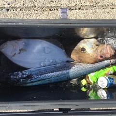 12月 27日(金) 午前便・ヒラメ釣りの写真その5