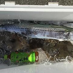 12月 27日(金) 午前便・ヒラメ釣りの写真その7
