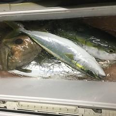 12月 29日(土) 午前便・午後便・ヒラメ釣りの写真その4