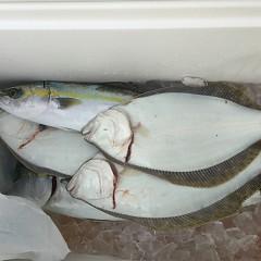 1月 11日(土) 午前便・ヒラメ釣りの写真その8