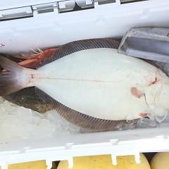 1月 11日(土) 午前便・ヒラメ釣りの写真その11