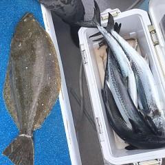 1月 13日(月) 午前便・ヒラメ釣りの写真その6