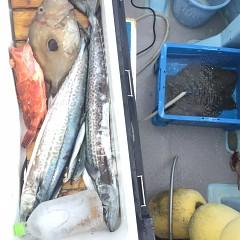 1月 13日(月) 午前便・ヒラメ釣りの写真その8