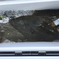 1月 15日(水) 午前便・ヒラメ釣りの写真その9